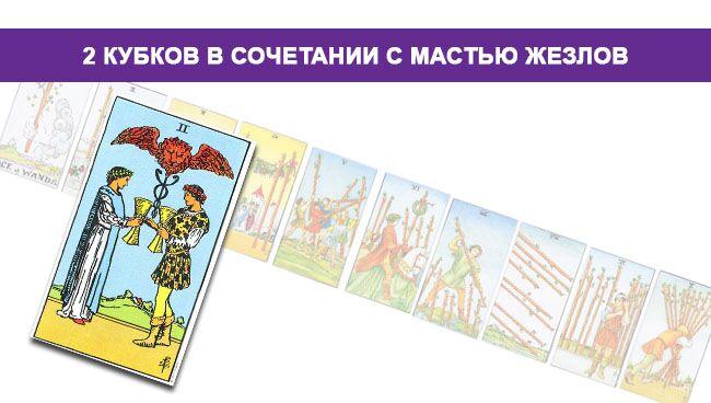 2 (Двойка) Кубков (Чаш) Таро значение в сочетании с мастью Посохов
