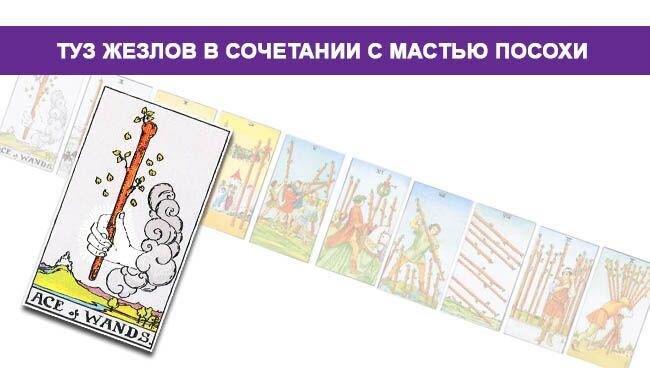 Туз Жезлов Таро значение в сочетании с мастью Посохов/Жезлов