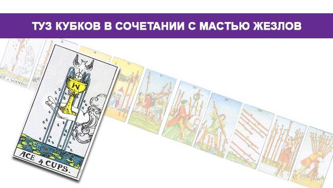 Туз Кубков (Чаш) Таро значение в сочетании с мастью Посохов