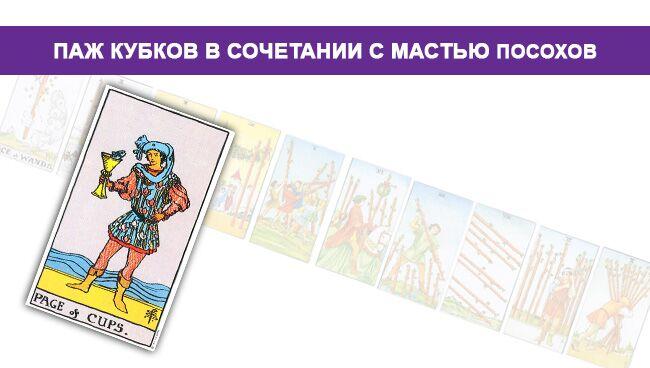 Значение Пажа Кубков Чаш с мастью посохов жезлов