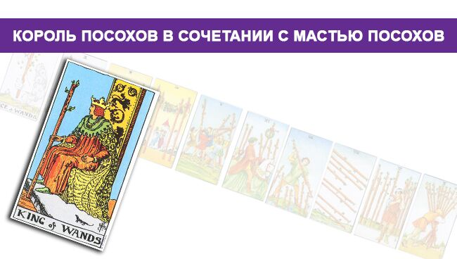 Король Жезлов в сочетании с мастью Посохов