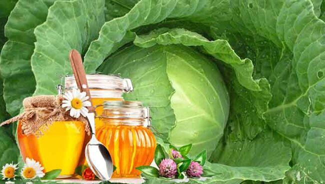 Заговор от кисты с мёдом и капустой