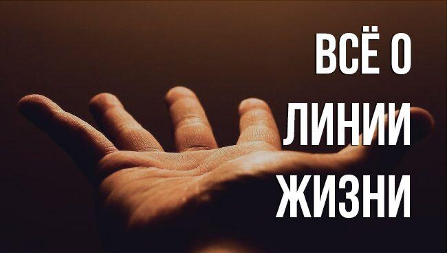 где находится линия жизни на руке
