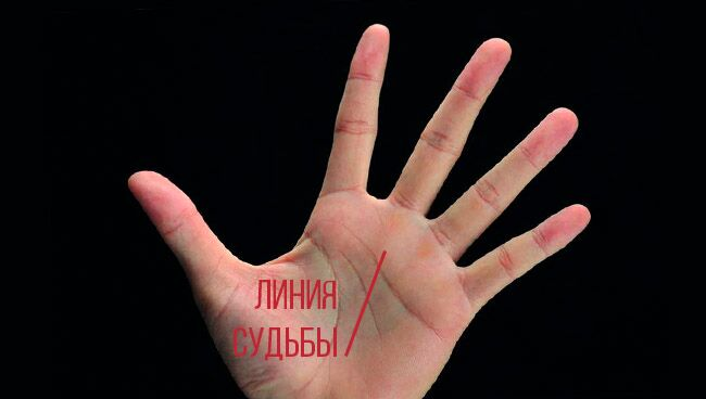 Линия судьбы на руке расположение