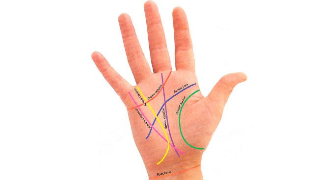 Значение линий руки в хиромантии