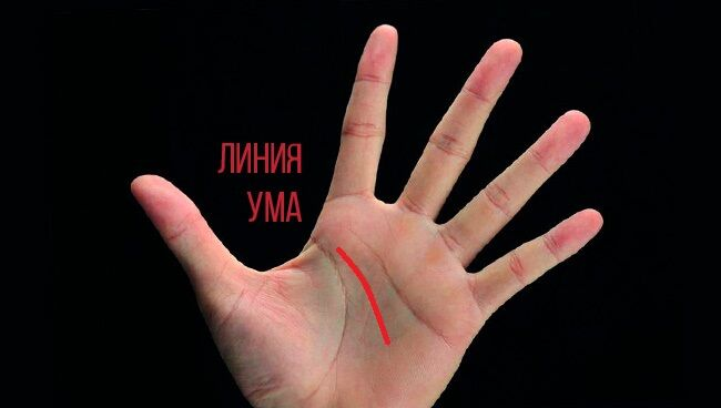 линии ума на руке где находится