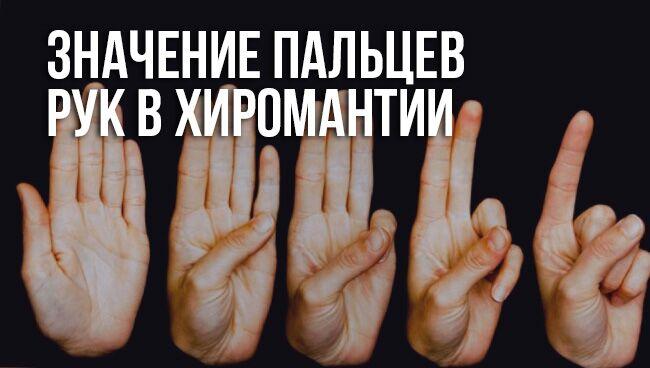 Значение пальцев рук в хиромантии