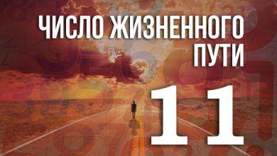 число жизненного пути 11