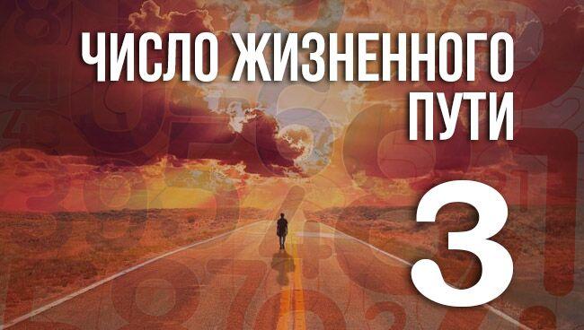 число жизненного пути 3