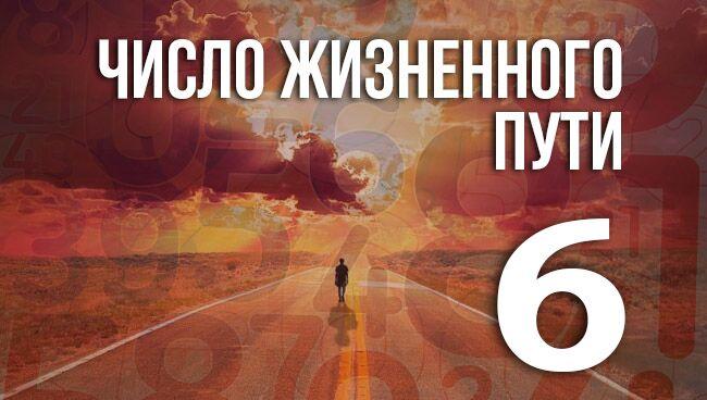 число жизненного пути 6