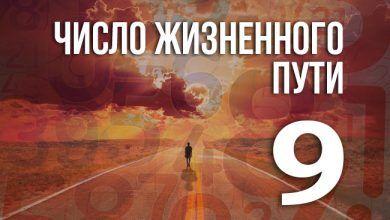 Число жизненного пути 9