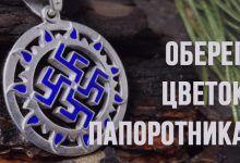 Славянский оберег цветок папоротника