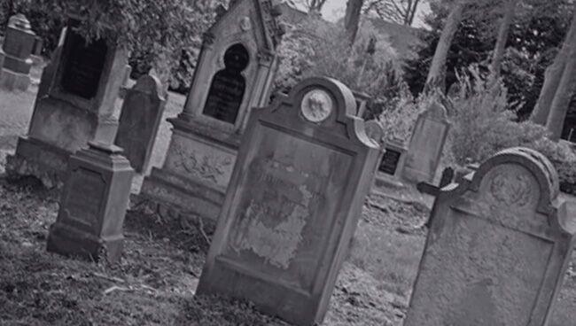 К чему снится кладбище по популярным сонникам