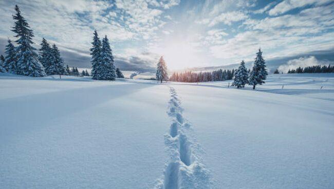 К чему снится белый снег