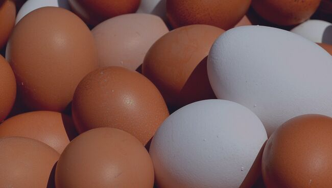 К чему снится много яиц во сне